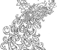 Coloring Pages For Adults Peacock Fresh In