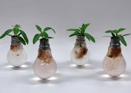 ten planters created from light bulbs recyclenation