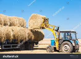 Tractor Loading Hay Bales On Truck Stock Photo (Edit Now) 161114786 ... Hay Truck Stock Photos Images Alamy My 63 Chevy Hauling Hay Trucks Hay Hauler Loading Time Lapse Youtube Gmc Diesel Dairyland Co 24 Truck And Trailer In Flickr Australian Trucking On Twitter The Volvotrucks Ata Safety 5jp Ranch Life Page 6 Delivering To Market At Tenerir The Atlas Mountains Pinterest Overloaded In West Coast Of Turkey Image Farm With Family Help Men Riding Full
