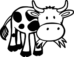 Cows Coloring Pages