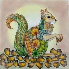 17 Best Esquilo Floresta Encantada Images On Pinterest