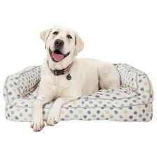 Cuddler Dog Bed by Cynthia Rowley Dot Canvas Rectangle Couch Bolster Dog Bed Xxl