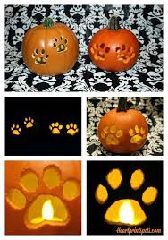 Boston Terrier Pumpkin Pattern by Diy Paw Print Pumpkin Fall Decor Heartprints Pets