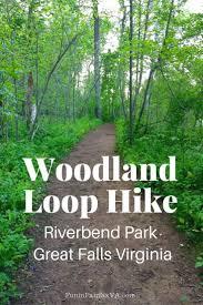 Pumpkin Patch Winchester Virginia by Woodland Loop Hike In Riverbend Park Virginia Fun In Fairfax Va