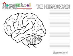Brain Crafts Activities