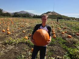 Bishop Pumpkin Farm Hours by Learn By Growing Cal Poly Crops Club Pumpkin Patch And Corn Maze