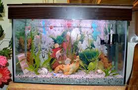 a guide on choosing proper lighting for aquarium plants