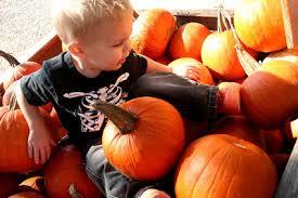 Big Orange Pumpkin Patch Celina Texas by Thepoefam October 2008