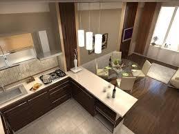 erfolgreiches design der küche kombiniert mit wohnzimmer in