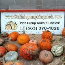 Pumpkin Patch Iowa City by Buffalo Pumpkin Farm And Events Home Facebook