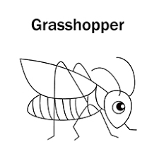 Pasture Grasshopper Coloring Page
