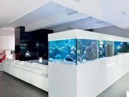 pin clara clarajohannak auf aquarium wohnung aquarium