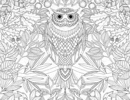 Johanna Basford Secret Garden Coloring Book For Adults