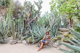 moorten botanical gardens loveRavayna lifestyle with lagniappe