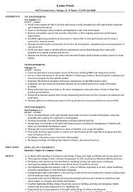 Download VP Engineering Resume Sample As Image File