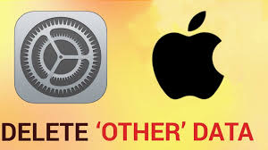How to delete other data on iPhone and iPad