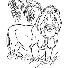 Full Size Of Coloring Pagesfabulous Pages Draw A Lion Drawing Challenge Vintage Circus