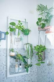 grünpflanzen im badezimmer mit bild kaufen 12675065