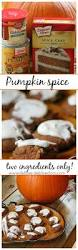 Cake Mix Pumpkin Cookies by Best 25 Pumpkin Cookies With Cake Mix Ideas On Pinterest Spice