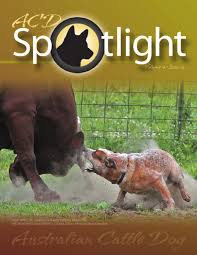 ACDSpotlight Summer 2011 By Debcasey - Issuu This Articles Tells How 14 People Are Boycott Dr Pepper Killeen No 4 In Texas For Employers Looking To Hire Business American Classifieds May 19th Edition Bryancollege Station By Ptdi Student Driver Placement 1994 Tour De Sol Otographs Truckdrivingschool 12th Drive The Guard Scholarship Cdl Traing Us Truck Driving School Thrifty Nickel Want Grnsheet Fort Worth Tex Vol 31 88 Ed 1 Thursday