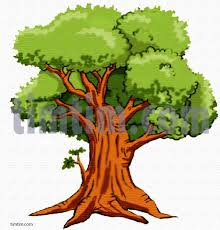 Free drawing of An Oak Tree from the category Climate & Nature TimTim
