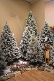 Balsam Christmas Trees Uk by 5ft 6ft 7ft Or 8ft Snowy Vancouver Mixed Pine Artificial