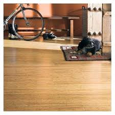 Bamboo Hardwood Flooring Pros And Cons by Is Bamboo Flooring Good Images Flooring Design Ideas