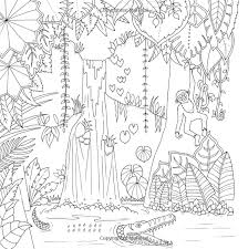 Amazon Magical Jungle An Inky Expedition And Coloring Book For Adults