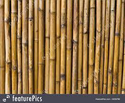 100 Bamboo Walls Texture Stock Image I3033790 At FeaturePics