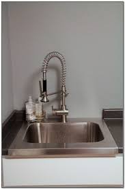 Sink Faucet Rinser Rinse Ace by Rinse Ace Sink Faucet Rinser Canada Best Faucets Decoration