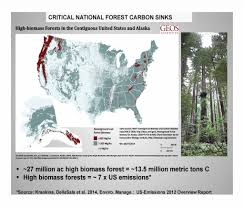 Define Carbon Sink Geography by 100 Define Carbon Sink Forest Mapping Carbon Sequestration