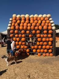 Underwood Farms Pumpkin Patch Hours by Underwood Family Farms Fall Harvest Festival Socal Shuffle
