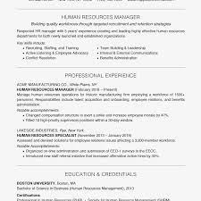 More Management Resume Examples