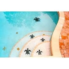 Npt Pool Tile Palm Desert by 22 Best Pool Tile Ideas Images On Pinterest Pool Designs Tile