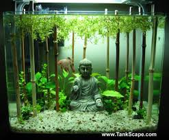 Spongebob Aquarium Decor Set by Best 25 Fish Tank Decor Ideas On Pinterest Fish Tank Fish
