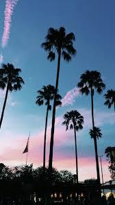 Palm Tree Wallpaper Blue Photography Tumblr Pesquisa Google