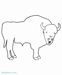 Coloring Pages Buffalo