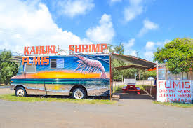 You Had Me At Aloha ❥ Afternoon In Waikiki - My Suitcase Journeys Food Truck On Oahu Humans Of Silicon Valley Plate Lunch Hawaiian Kahuku Shrimp Image Photo Bigstock Famous Kawela Bay Hawaii The Best Four Cantmiss Trucks Westjet Magazine Stock Joshuarainey 150739334 Aloha Honolu Hollydays Fashionablyforward Foodie Fumis And Giovannis A North Shore Must Trip To Kahukus Famous Justmyphoto Romys Prawns Youtube Oahus Haleiwa Oahu Hawaii February 23 2017 Extremely Popular