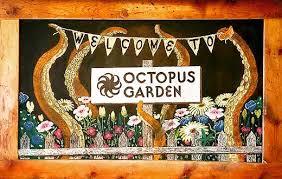 Octopus Garden Holistic Yoga Centre