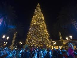 Fashion Island Lights Up Its 90 Foot Tree For The Holidays