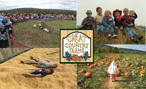 Chatham Kent Pumpkin Patches by Where Au Students Need To Go Apple And Pumpkin Picking This Fall