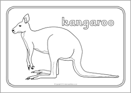 Australian Animals Coloring Pages 15 Colouring Sheets SB9002