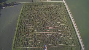 Toms Pumpkin Farm by Don U0027t Get Lost The 14 Best Corn Mazes In Ohio