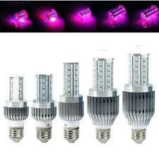 spectrum led light bulbs equivalent soft white series led