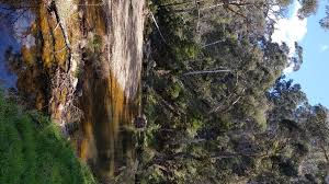 100 Lerderderg State Park Wikiloc Photo Of The Tunnel And River Circuit