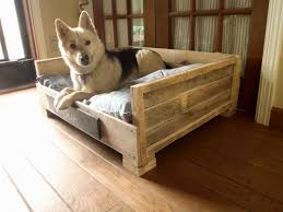 Tempur Pedic Dog Bed by Dog Beds U2013 Gallery Images And Wallpapers