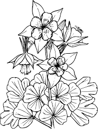 Colorado Blue Columbine Clipart