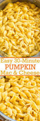Ways To Make A Pumpkin Last by 392 Best Images About Pumpkin Everything On Pinterest Mini