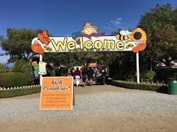 Uesugi Farms Pumpkin Patch by 子育て情報 アメリカ 新米ママmidoriのカリフォルニア子育てブログ