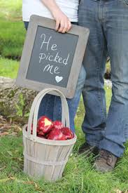 Pumpkin Patch Rice Lake Wi by Best 25 Apple Orchard Ideas On Pinterest Apples Buy Fruit